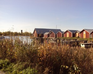 Thanner Judith WS 2011-12_Erfahrungsbericht_Studium_Seinäjoki_FI